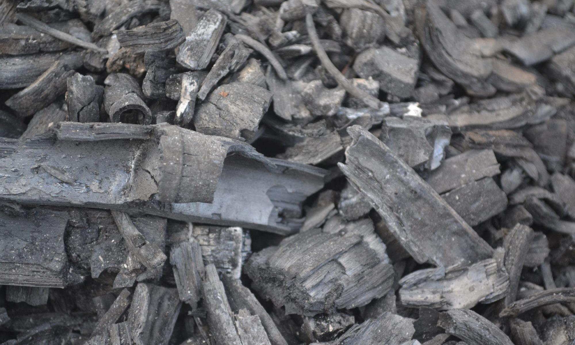 つながる竹炭